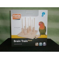 Brain Train Bird Brett