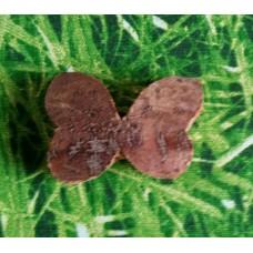 Kokos-Schmetterling